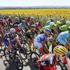 team cycling kit
